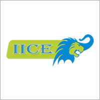 IICE ( Indian International Connect and Education ) Company Logo