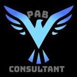 PAB CONSULTANT Company Logo