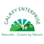 Galaxy Enterprise logo