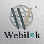 Webilok IT Services logo