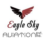 Eagle Sky Aviation Company Logo