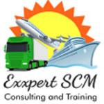 Exxpertscm Company Logo