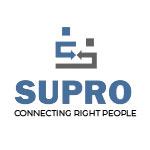 Suproinfo Consultancy Company Logo