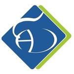 AD Systems Company Logo